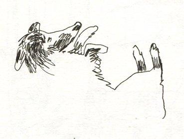 caloucalou-vacances-3 chien