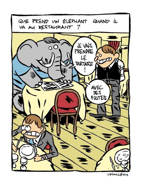 8-un elephant_v2